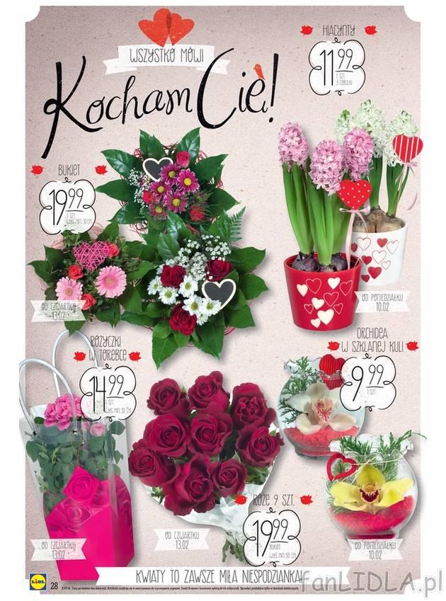 Kwiaty Bukiet Hiacynty Lidl Kwiaty Fanlidla Pl